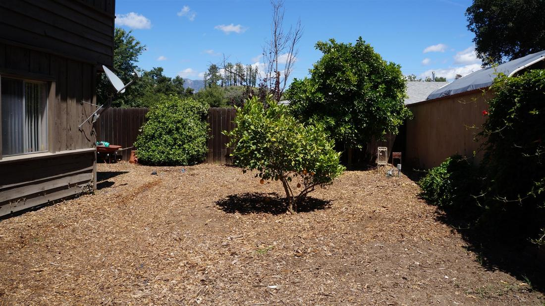 12546 6th Trail, Sylmar, CA 91342 - Backyard (7)