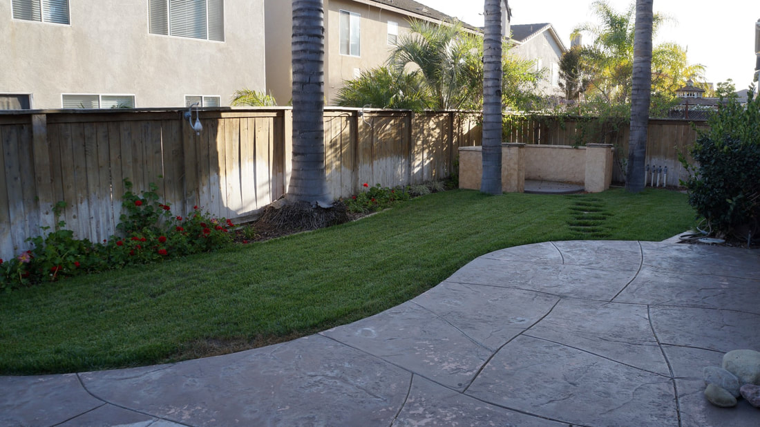 1704 Urbana Lane, Oxnard, CA 93030 - Backyard (2)