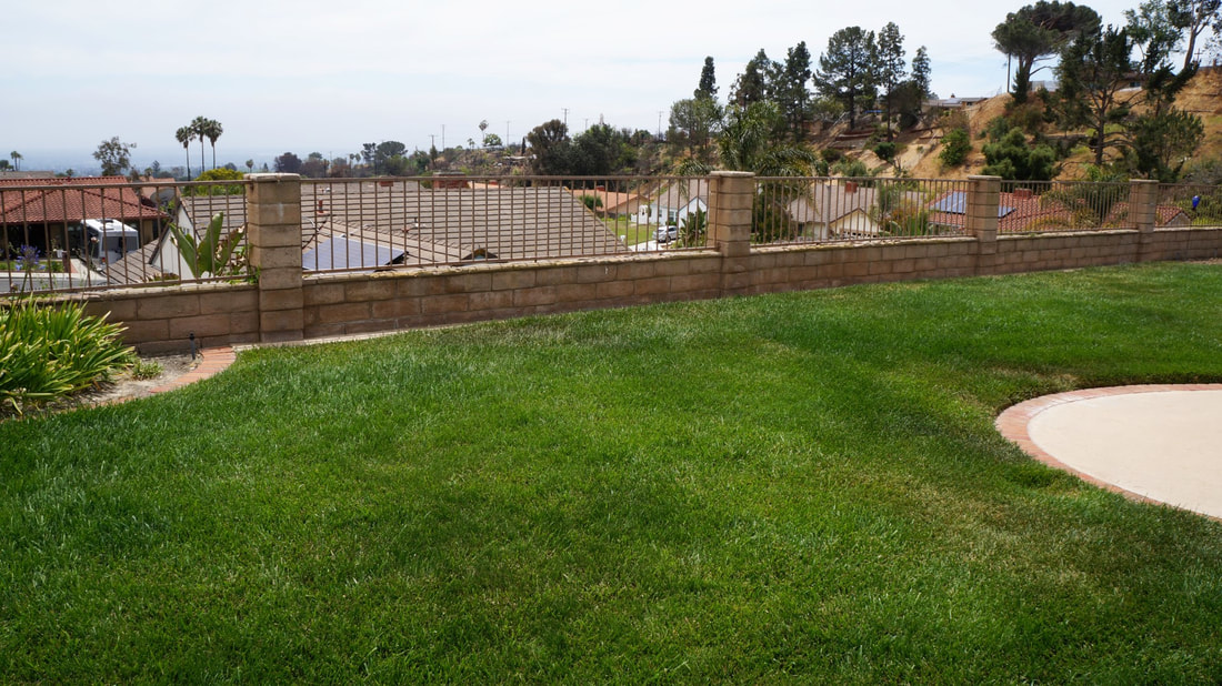 7018 Sonora Court, Ventura, CA 93003 - Backyard (8)